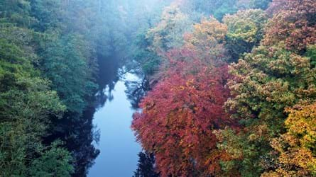 Aerial view of river lined by trees with red, yellow and green autumn leaves