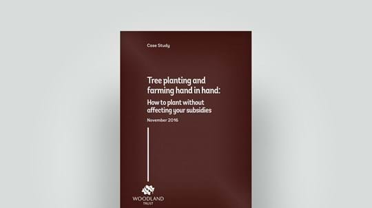 2016 case study on tree planting and farming