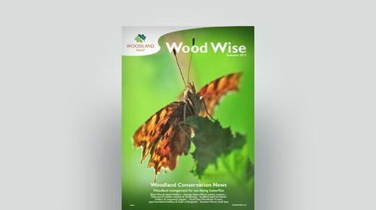 Cover of Wood Wise Autumn 2013 - butterflies