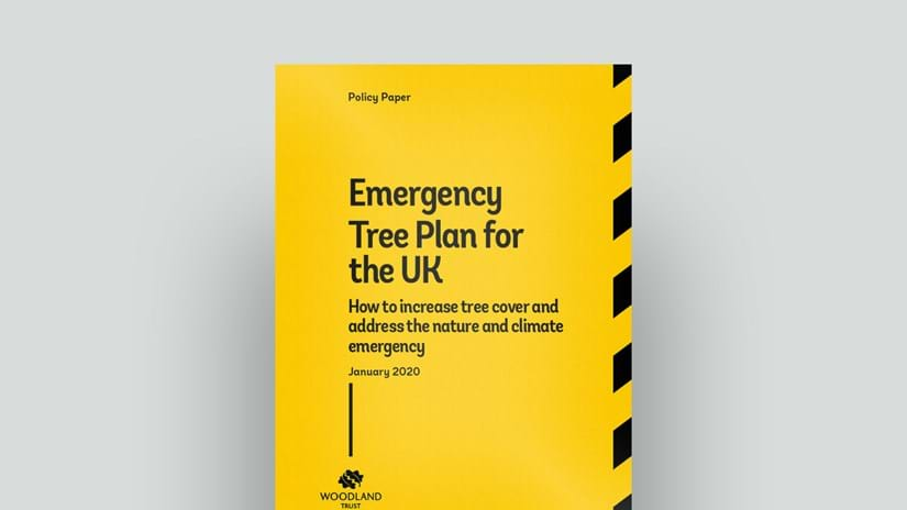 Emergency Tree Plan cover