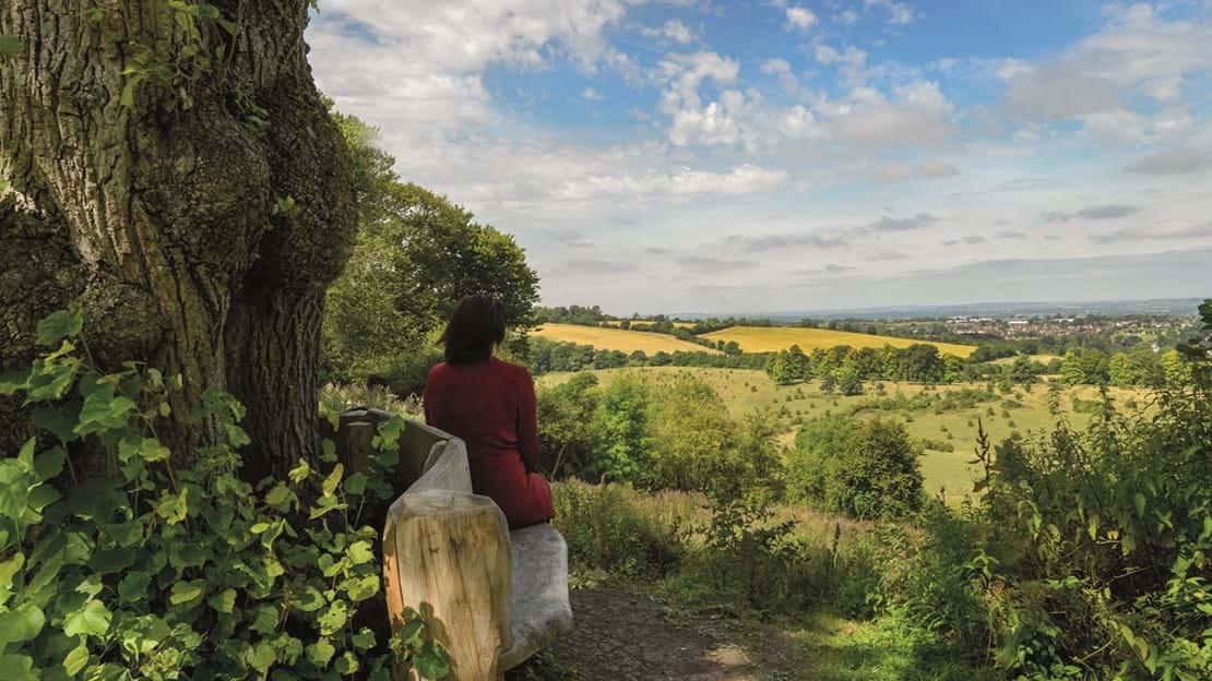 Lady sitting next to mature tree looking out across a sunny landscape