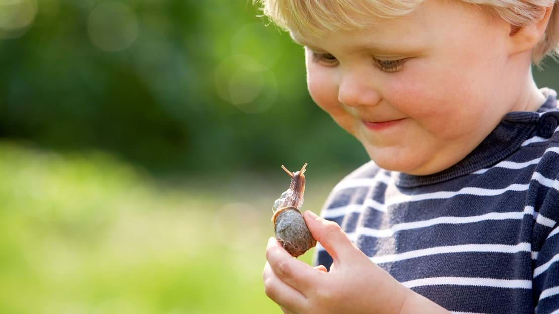 Boy looking at snail