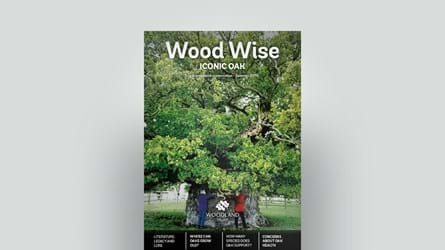 Cover of Wood Wise Summer 2019 - iconic oak