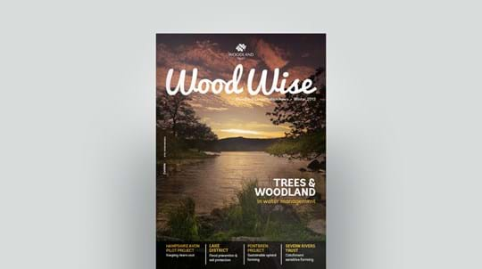 Cover of Wood Wise Winter 2013 - water management