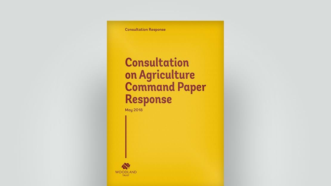 Agriculture Command Paper Response, May 2018