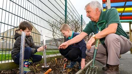 Yorkshire Tea tree planting with children