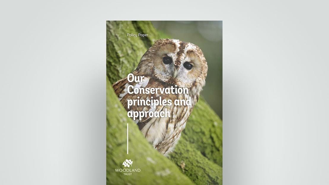 Conservation principle guide, 2018