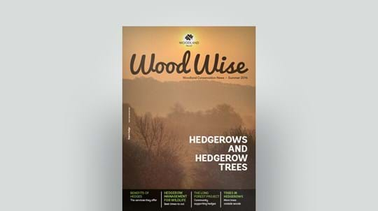 Cover of Wood Wise Summer 2014 - hedgerows