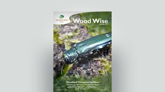 Cover of Wood Wise Summer 2013 - tree pests and diseases