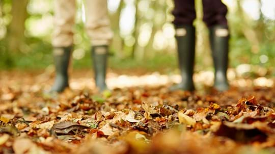 two people with wellies on leafy woodland floor