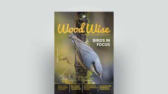 Cover of Wood Wise Autumn 2014 - birds in focus