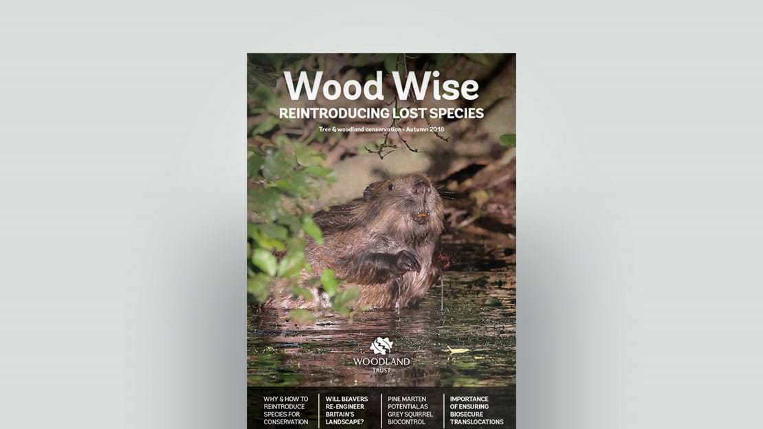 Cover of Wood Wise Autumn 2018 - reintroducing lost species