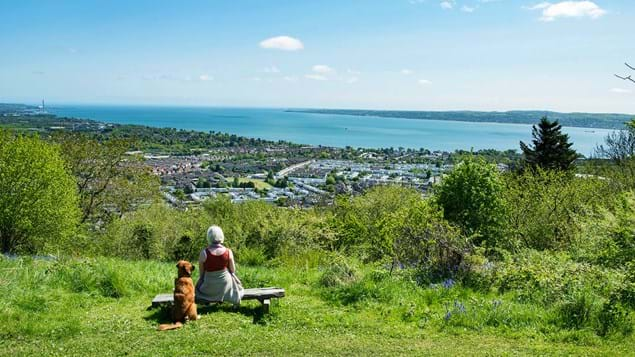 Woman and dog sitting on bench in low woodland overlooking Belfast with a sea view