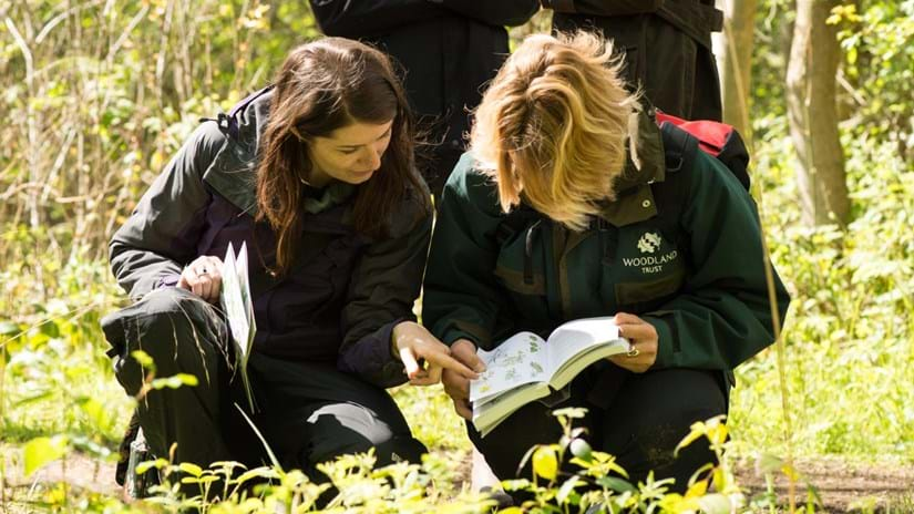 Woodland trust staff looking at ID book on a training day