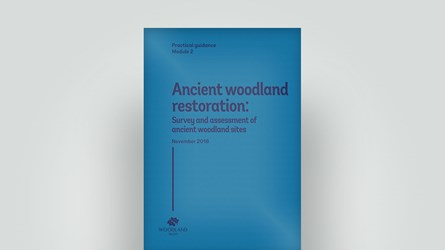 Ancient woodland restoration cover, November 2018