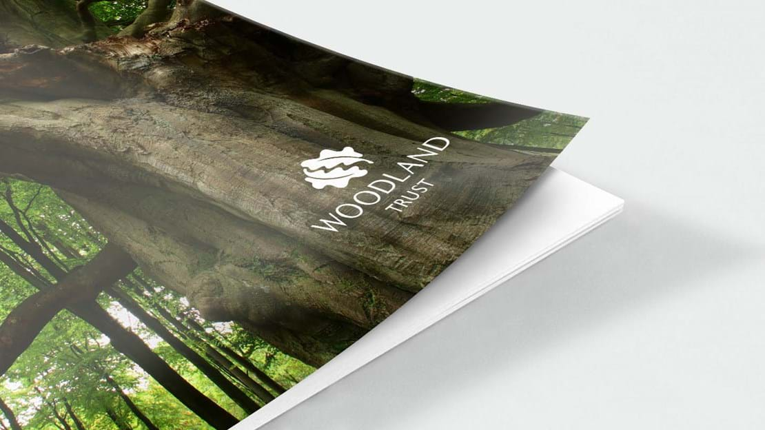 Ancient woodland report front cover