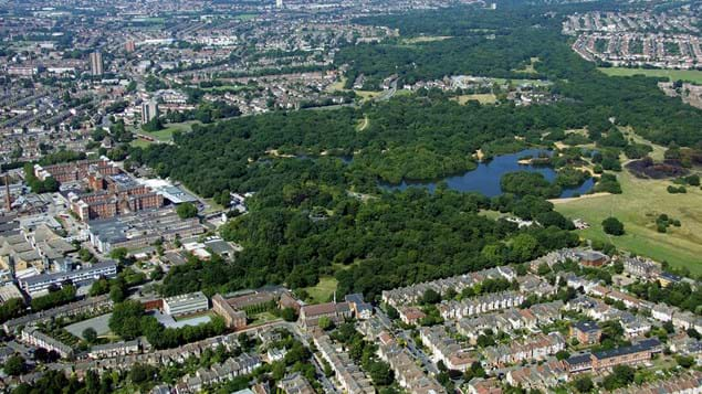 An aerial view of Epping Forest in East London showing urban buildup next to the woods