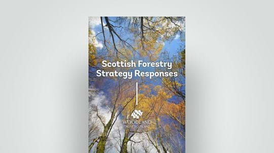 Scottish Forestry Strategy response document, 2019