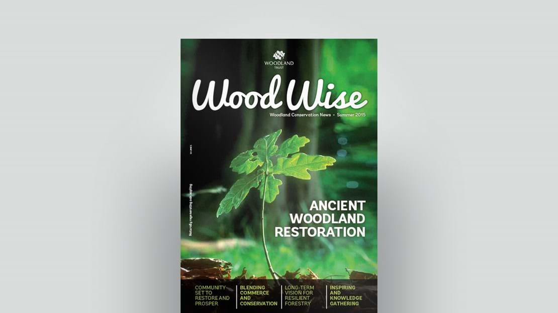 Cover of Wood Wise Summer 2015 - ancient woodland restoration