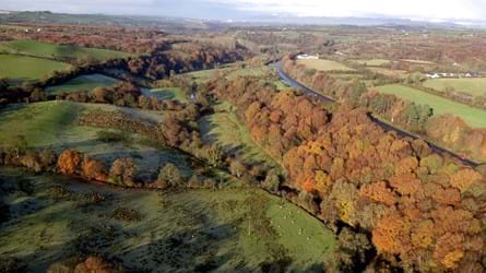 Aerial view of Killaoo woods