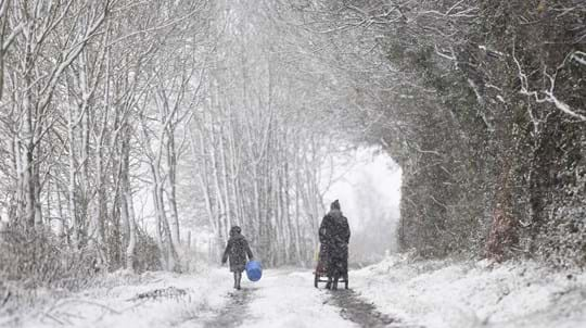 People walking through a snowy woodland