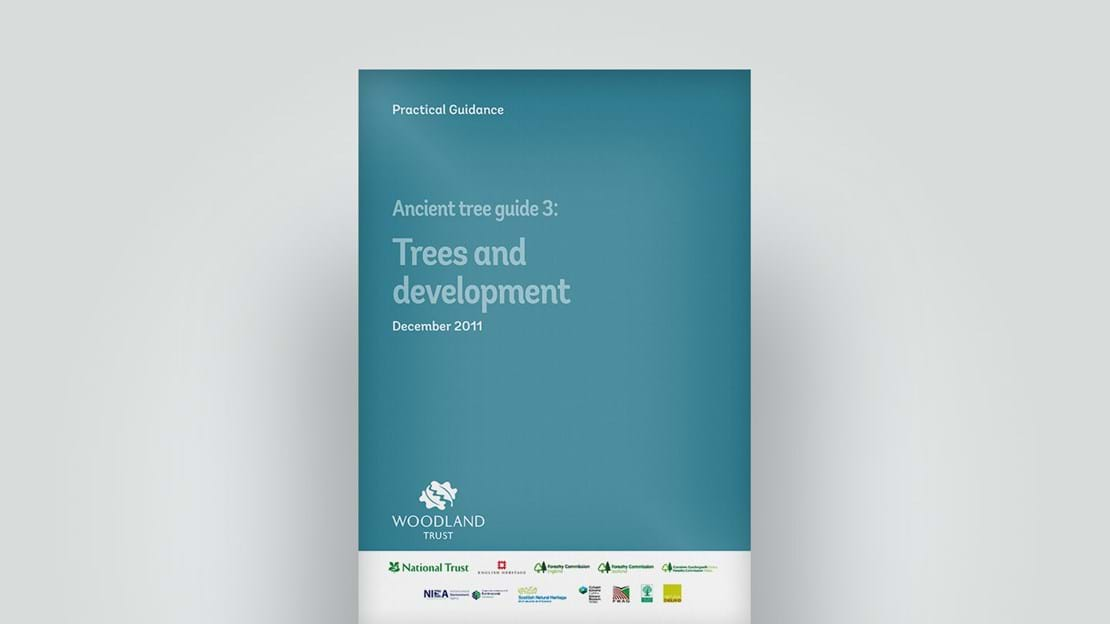 Front cover of Ancient Tree Guide 3 Trees And Development report, December 2011