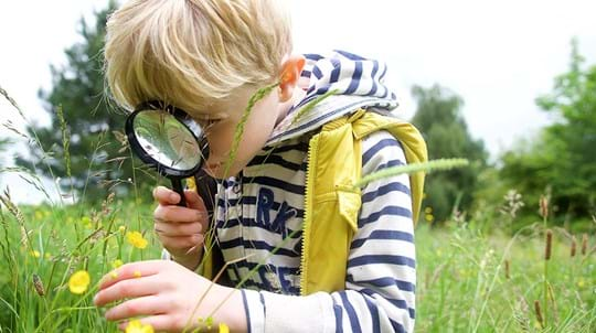 Young blonde boy looking at plants through a magnifying glass