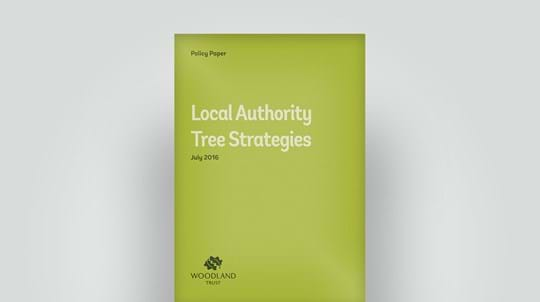 2016 policy paper on local authority tree strategies