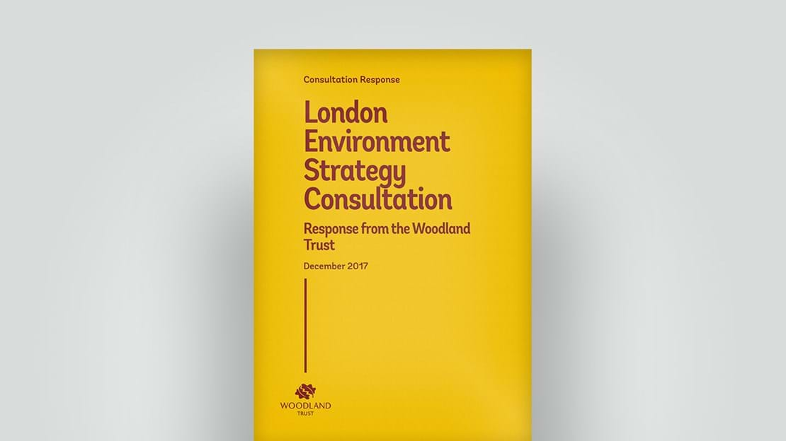London Environment Strategy Consultation response, 2017