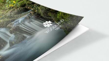 Waterfall in woodland front cover