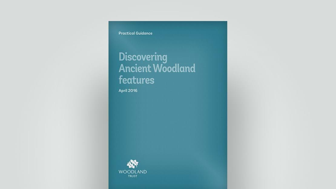 Discovering ancient woodland features, 2016