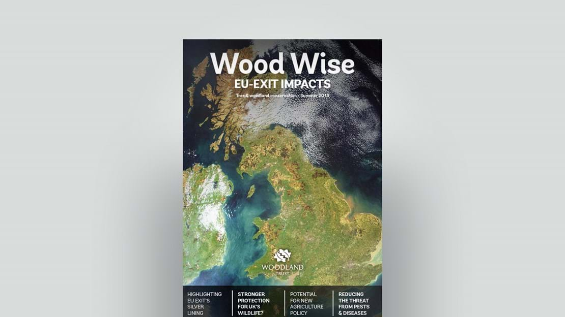 Cover of Wood Wise Summer 2018 - EU-exit impacts