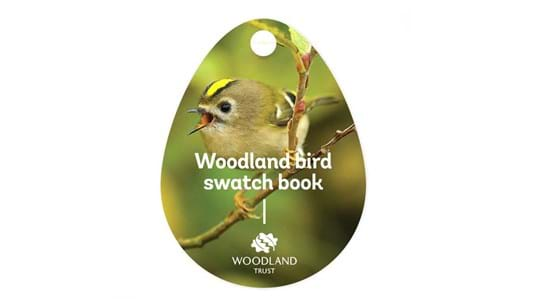 Woodland birds swatch book cover