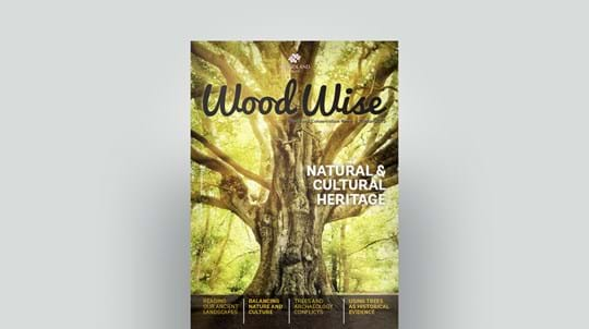 Cover of Wood Wise Winter 2015 - natural and cultural heritage