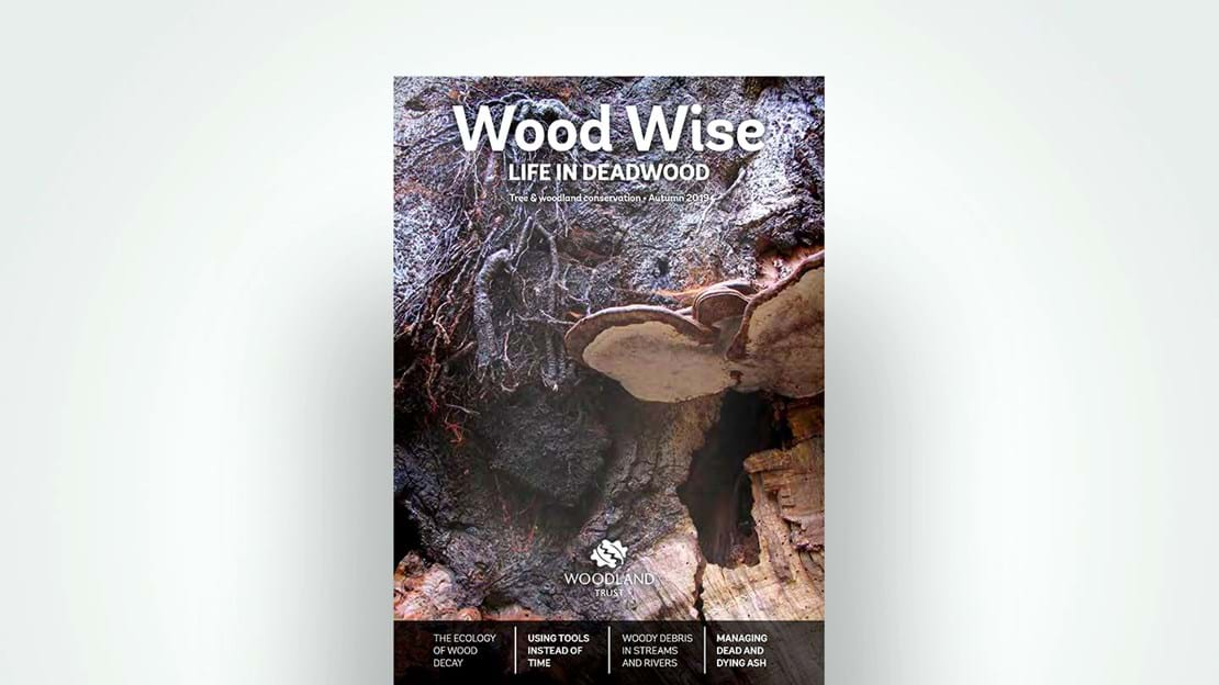 Front cover of Wood Wise, Autumn 2019 - Life in Deadwood