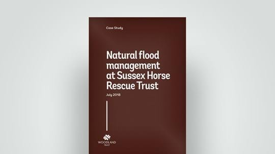 Flood management at Sussex Horse Rescue case study, 2018