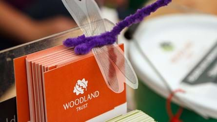 Orange leaflet with Woodland Trust logo and purple dragonfly toy resting on top