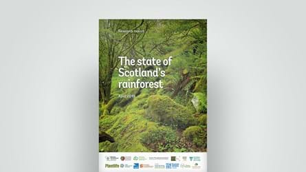 State of Scotland's rainforest, 2019 research report