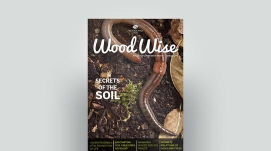 Cover of Wood Wise Spring 2016 - secrets of the soil