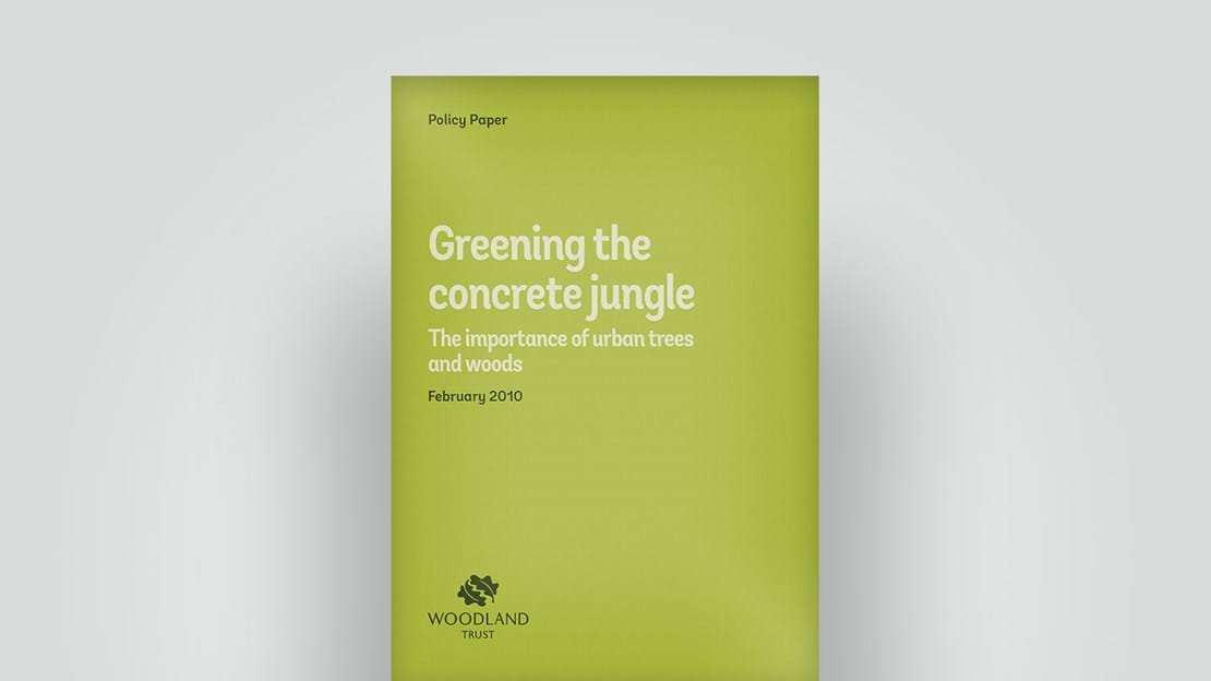 Greening the concrete jungle policy paper, February 2010