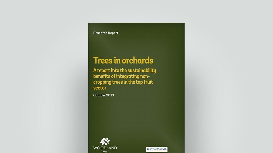 Trees in orchards, October 2013 research report