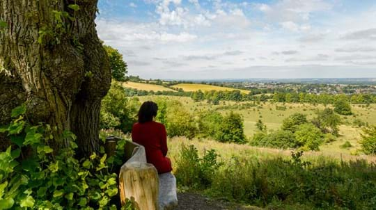 Woman on a bench overlooking Tring Park