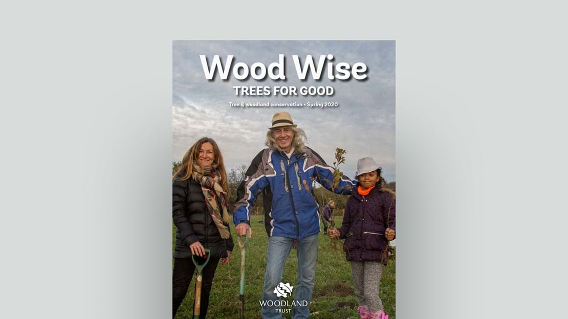 Wood Wise Spring 2020 magazine cover