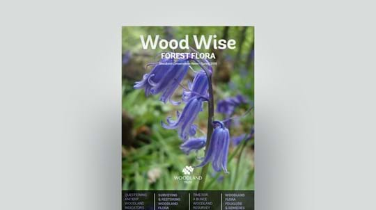 Cover of Wood Wise Spring 2018 - forest flora