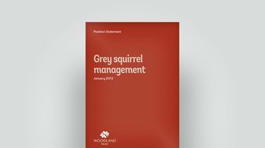 Grey squirrel management position statement, January 2013
