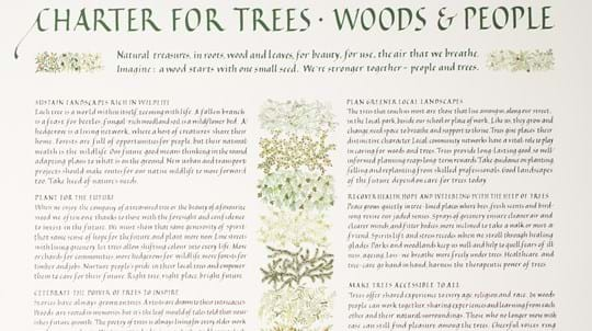 Illustrated Tree Charter document