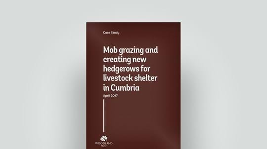 Grazing and hedgerow for livestock case study, April 2017