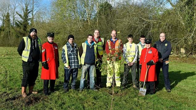Sombre tree planting event, Brackfield Wood