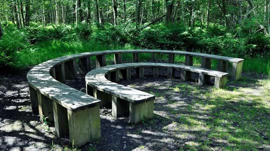 Horseshoe-shaped benches, Monkstown Wood