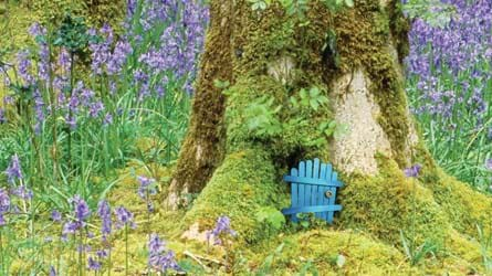 Blue fairy door at the base of the tree among bluebells